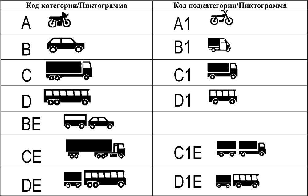 Категории водительских удостоверений по кодам