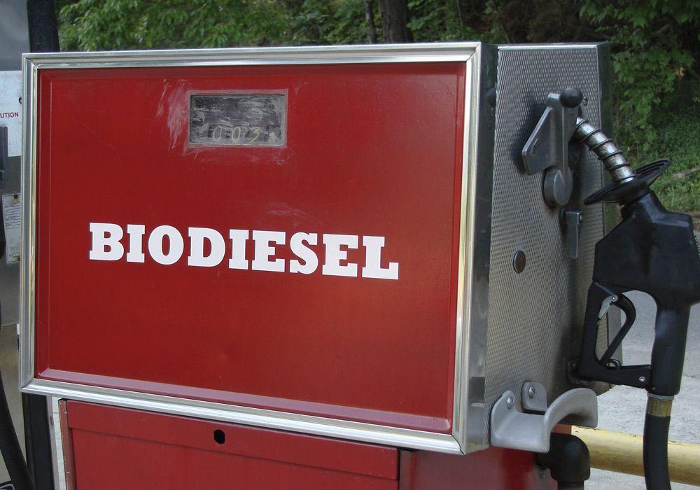 Биодизель для авто