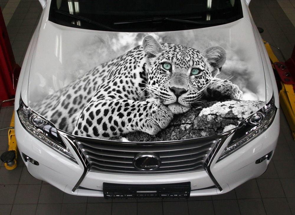 Белый лексус с рисунком леопарда на капоте